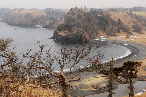 Синдзо Абэ: Выселять россиян с Курил японские власти не намерены